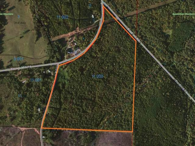 62+/- Acres Young's Mill Road : Lineville : Clay County : Alabama