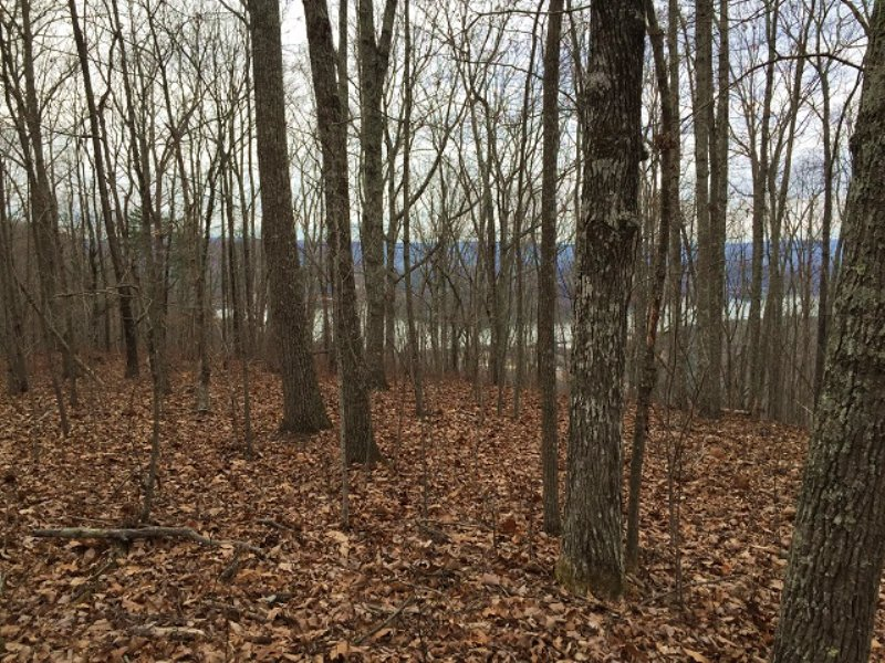 6.85+/- Acres Lake View Property : South Pittsburg : Marion County : Tennessee