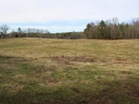 Online Only Auction 21+/- Acres