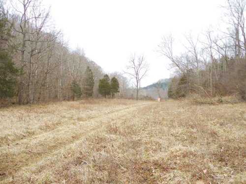 A3567 - 19.55 Acres : Columbia : Adair County : Kentucky
