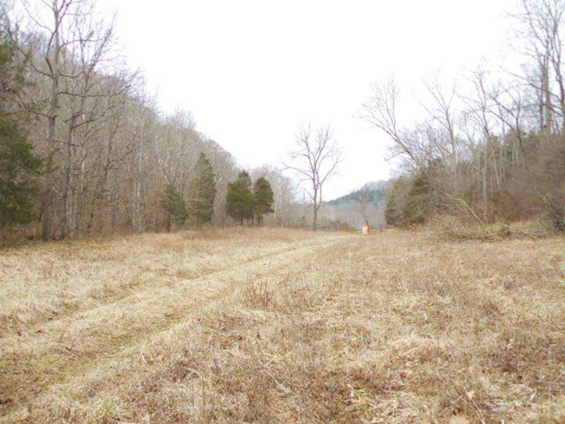 A3567 - 19.55 Acres : Columbia : Adair County : Kentucky