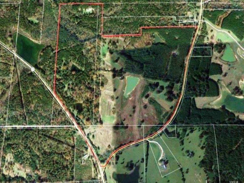 Camden Farm 145 : Camden : Madison County : Mississippi