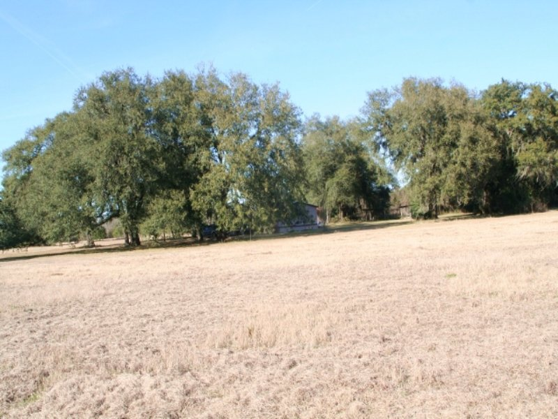 Great Pasture & Hunting Land : Hilliard : Nassau County : Florida