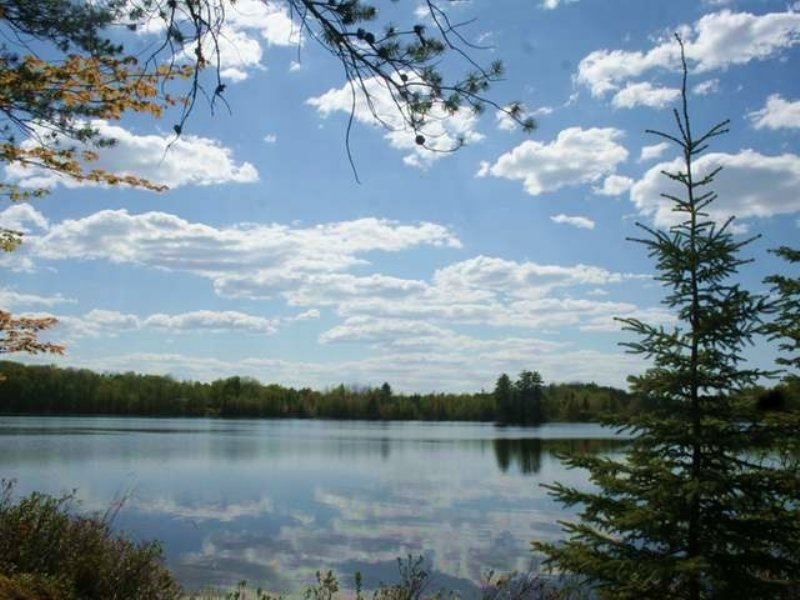 Acreage On Minonk Lake : Presque Isle : Vilas County : Wisconsin