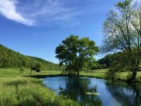 272 Acres Ag & Rec Land
