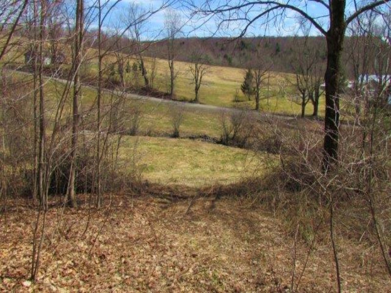 Land Near Cortland And State Forest : Solon : Cortland County : New York