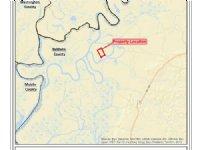 Private Alabama River Tract : Stockton : Baldwin County : Alabama