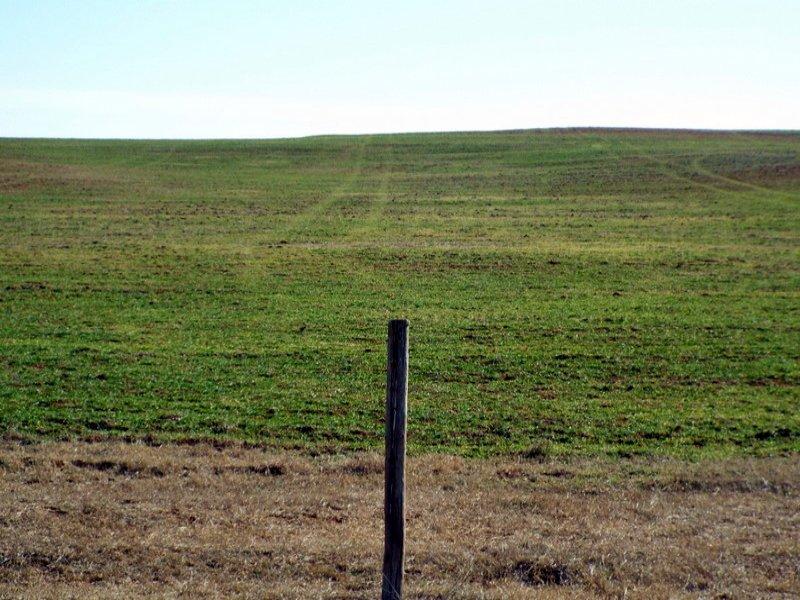4/9 Auction - 80 Acres : Goltry : Alfalfa County : Oklahoma