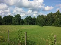 5.2 Acres Of Beautiful Country