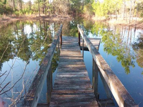 Hidden Hideaway : Brooklet : Bulloch County : Georgia
