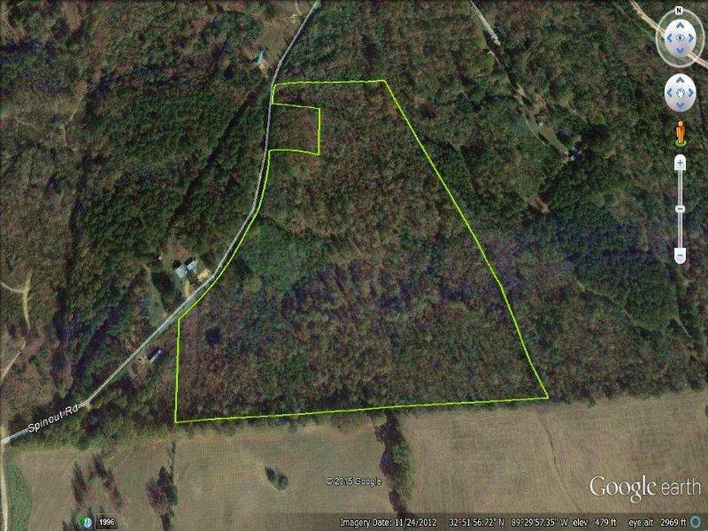 31 Acres : Carthage : Leake County : Mississippi