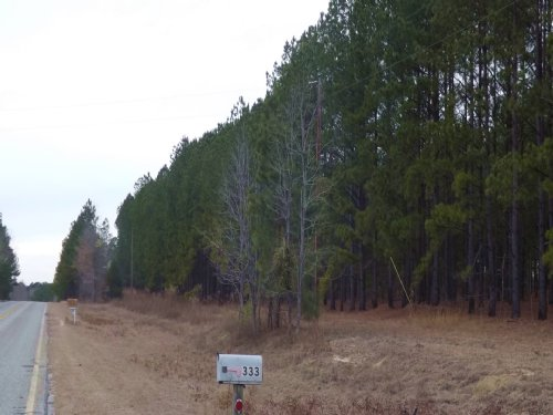 400 Acres - Reduced : Reynolds : Taylor County : Georgia