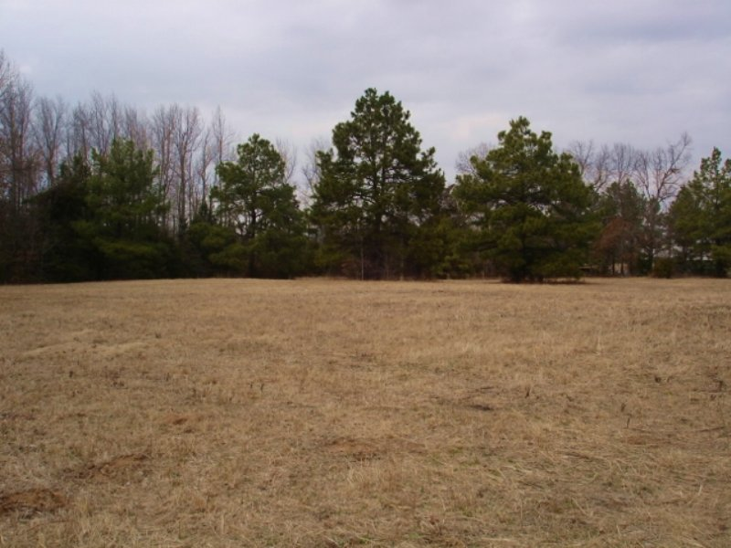 15 Wooded & Open Acres For Sale : Detroit : Red River County : Texas