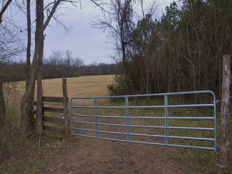 73 Acres : Macon : Noxubee County : Mississippi