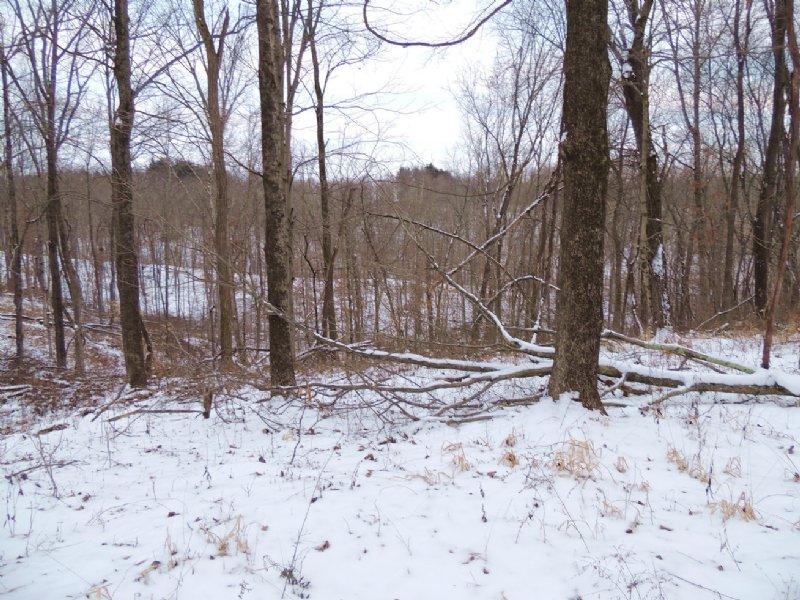 Sr 555 - 56 Acres : Malta : Morgan County : Ohio