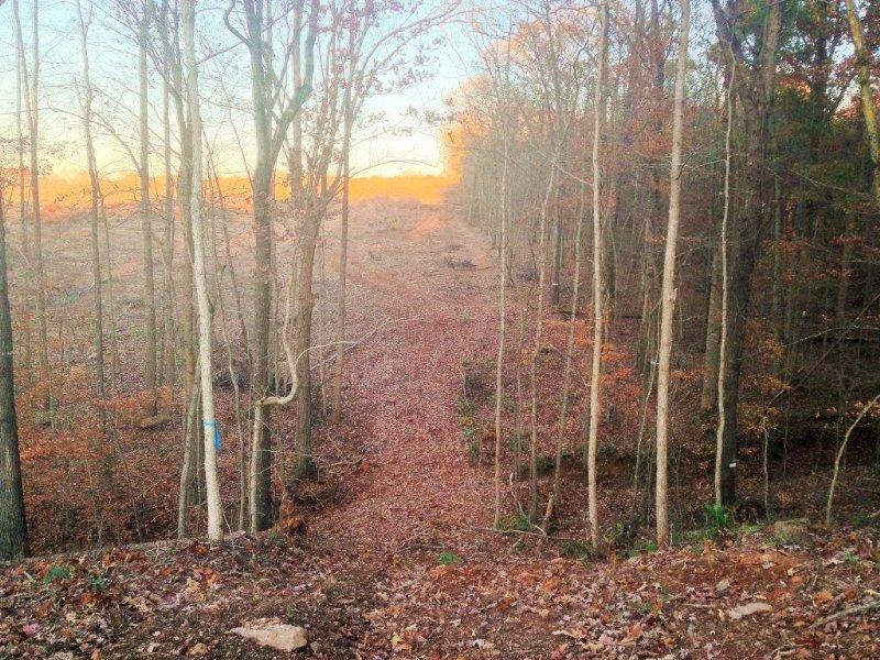 Unawatti Creek : Carnesville : Franklin County : Georgia