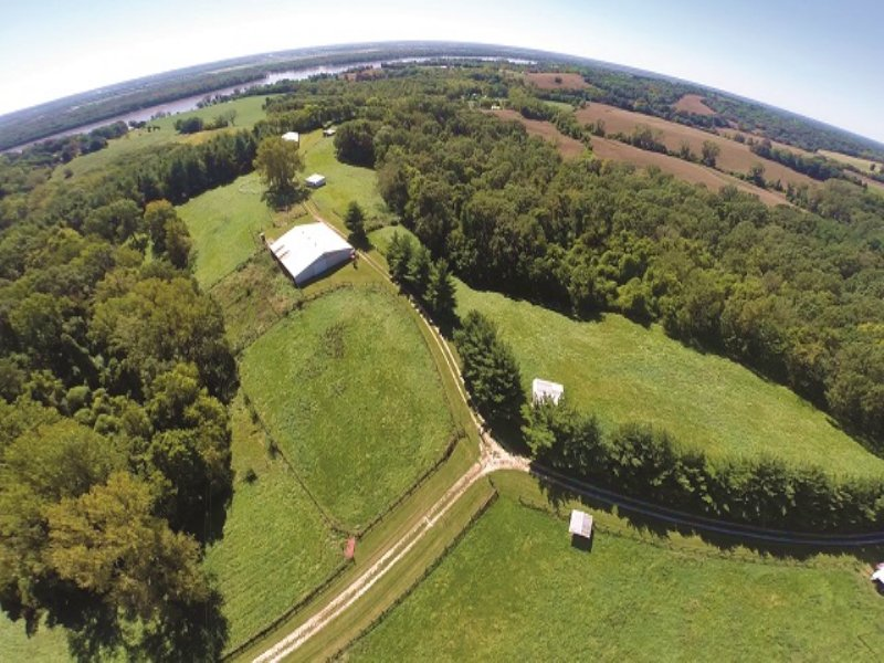 Land Auction : Golden Eagle : Calhoun County : Illinois