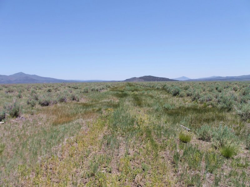 20 Acres Moon Valley Ranch : Termo : Lassen County : California