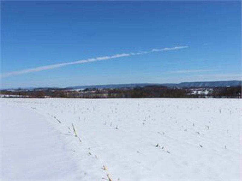 46 +/- Acres Of Land For Auction : Bloomsburg : Columbia County : Pennsylvania
