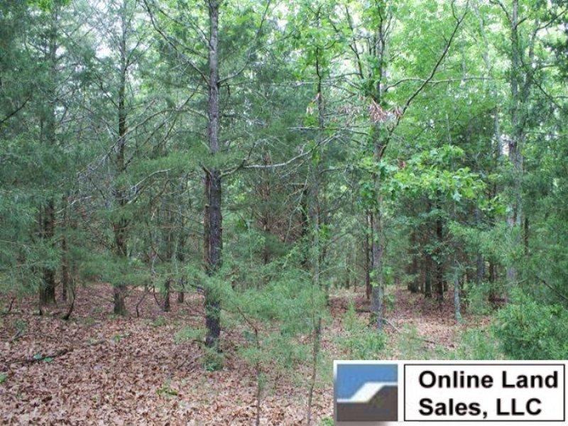 6.18 Acres Cedar Ridge Ranch : Rolla : Phelps County : Missouri