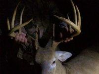 108 Ac Big Timber Great Hunting : Rupert : Taylor County : Georgia