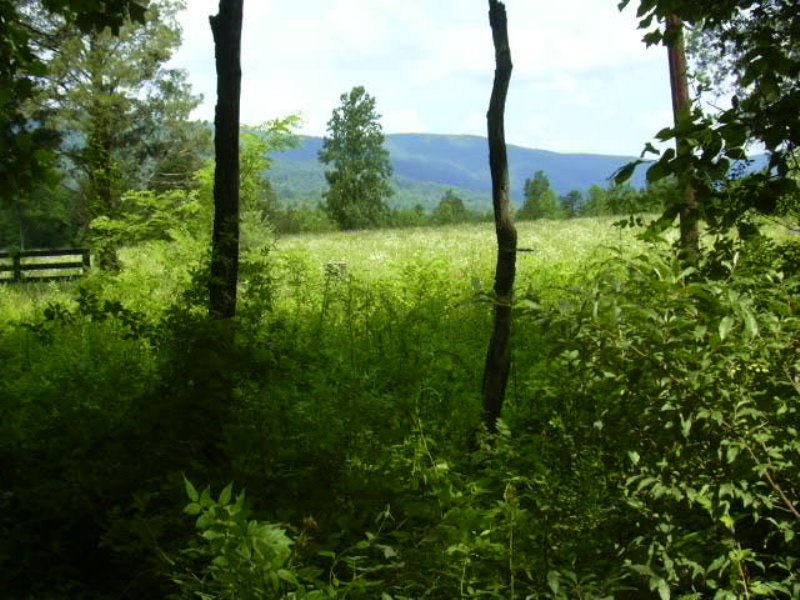Great Hunting, Recreational Retreat : Crozet : Albemarle County : Virginia