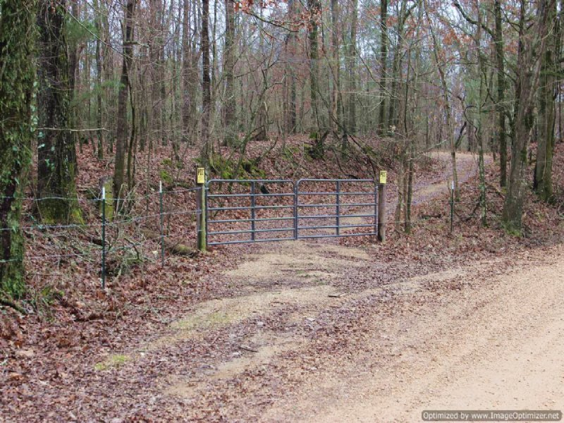 259 Ac Rec/timber Tract : Yazoo City : Yazoo County : Mississippi