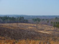 Timber Inv., Hunting And Homesite