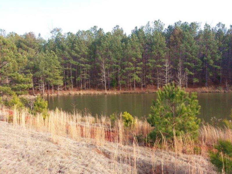 64.75+/- Acres For Sale : Delta : Randolph County : Alabama