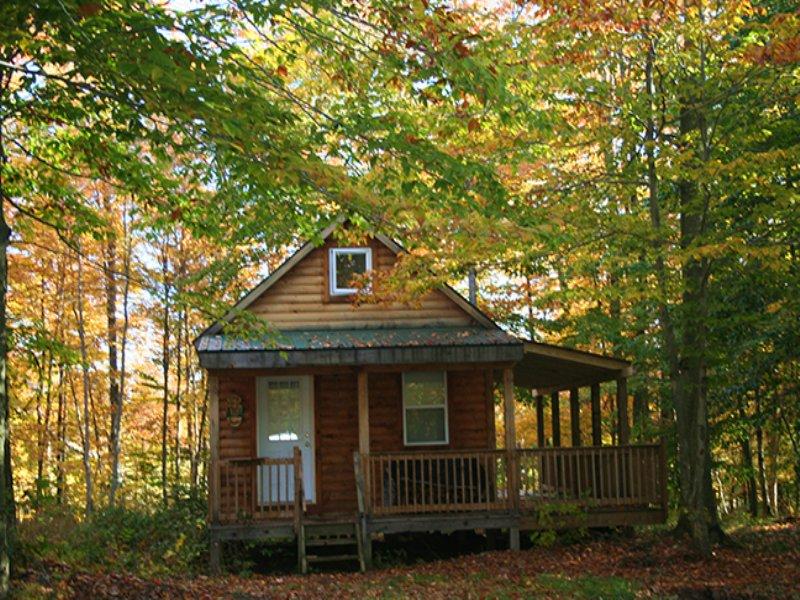 Cabin Near Syracuse With Well : Amboy : Oswego County : New York