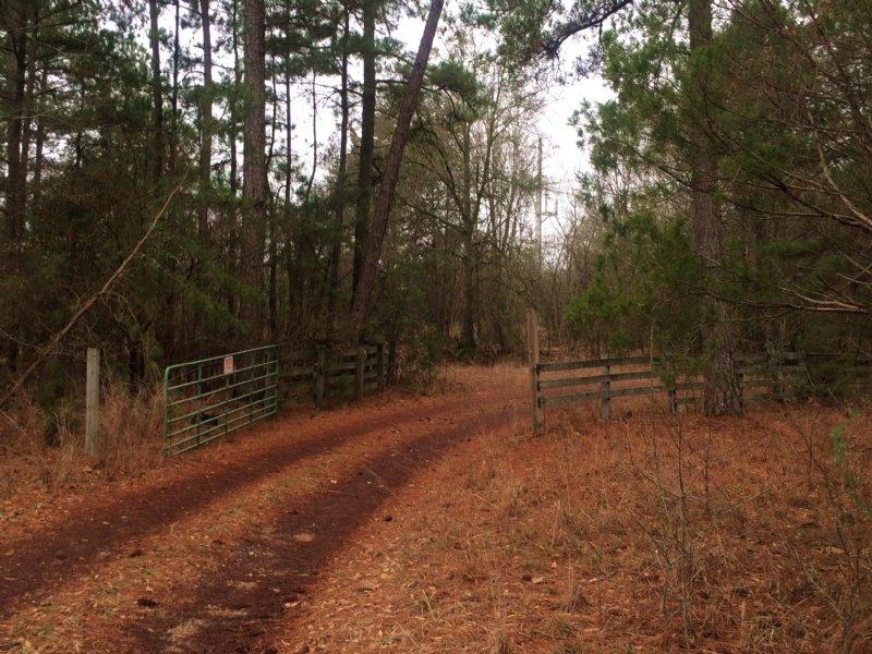 Family Retreat : Forsyth : Monroe County : Georgia
