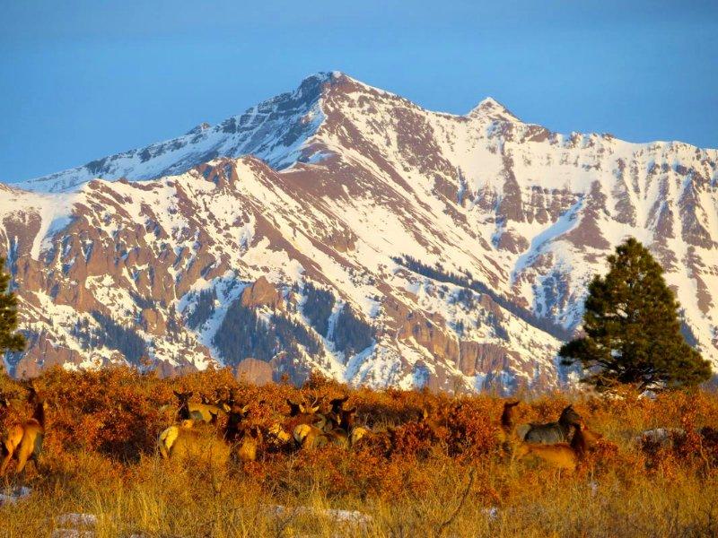 Canyon Creek Ranch : Telluride : San Miguel County : Colorado