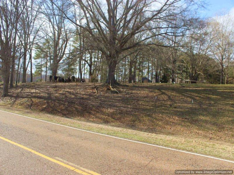 15 Ac Mini Farm / Estate Tract : Raymond : Hinds County : Mississippi