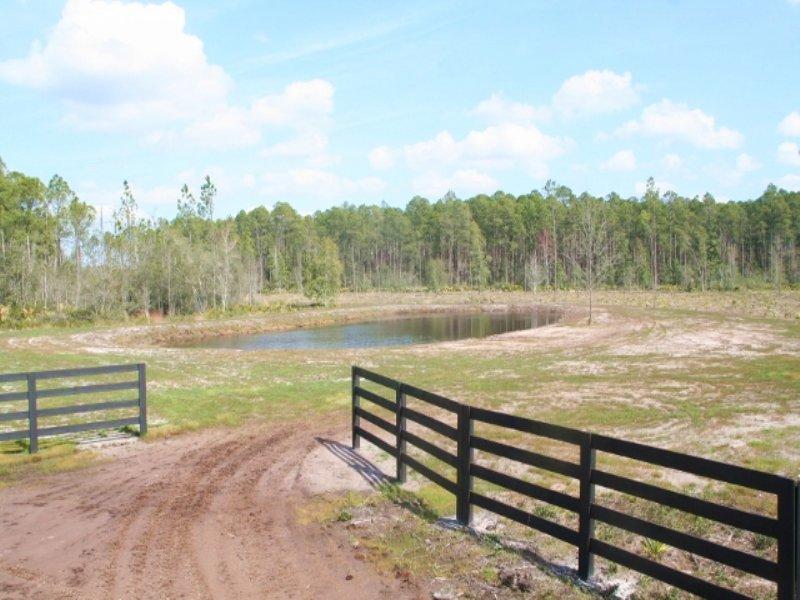 110 Acres, Welch Rd : Callahan : Nassau County : Florida