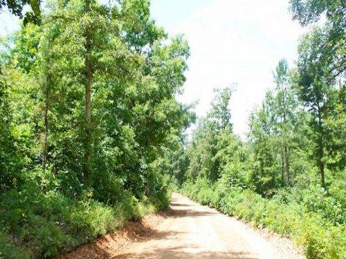 6.02 Acre Green Mountain Ranch : Winona : Shannon County : Missouri