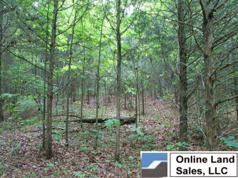 10.19 Acres Cedar Ridge Ranch : Rolla : Phelps County : Missouri