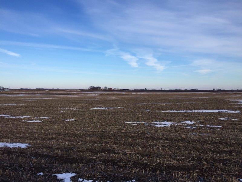 154 Acres : Cylinder : Palo Alto County : Iowa