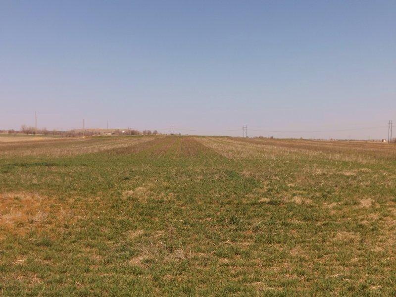 3- 10 Acre Building Tracks : Enid : Garfield County : Oklahoma