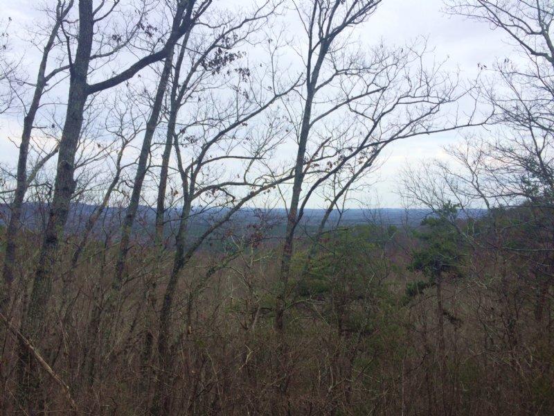 $1284/acre 70 Ac. Hunt / Recreation : Armuchee : Floyd County : Georgia