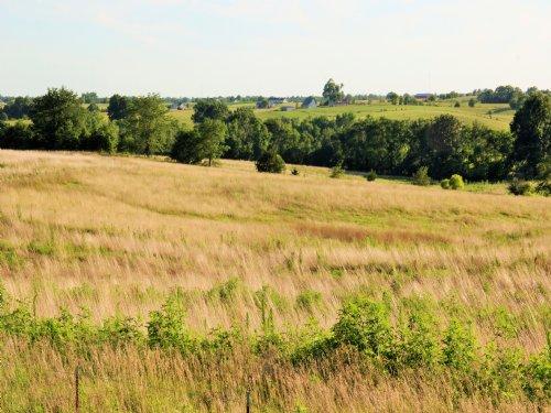 147 Acres : Kirksville : Adair County : Missouri
