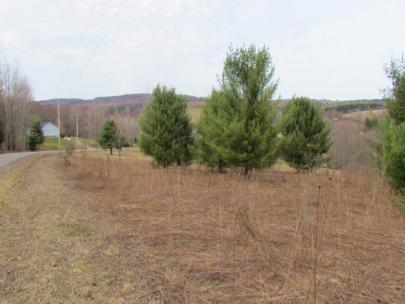7 Acres Quiet Country Living : Willet : Cortland County : New York