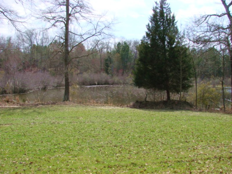 63 Acres Great Hunting With Cabin : Ellaville : Schley County : Georgia