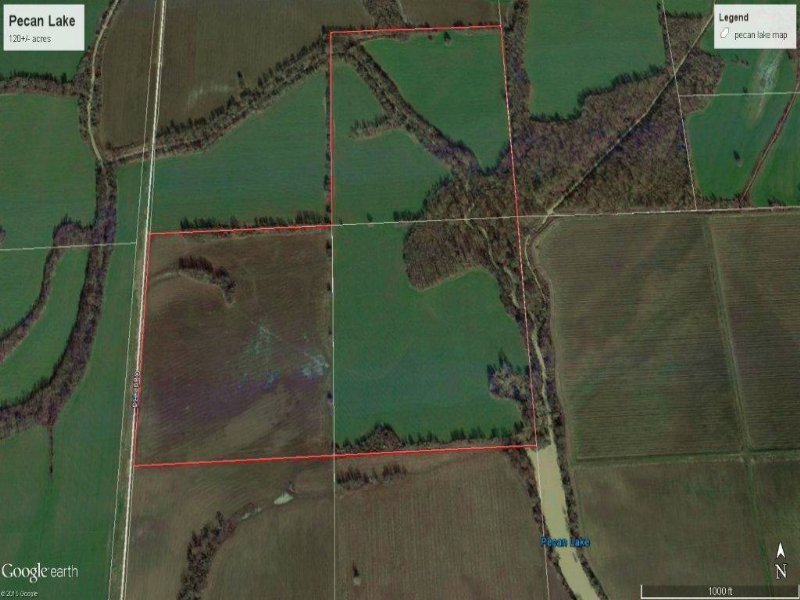 Pecan Lake Farm : Duncan : Bolivar County : Mississippi