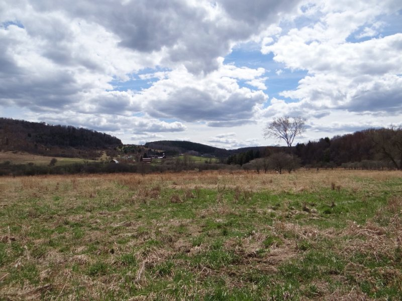 Farmland Motivated Seller : Virgil : Cortland County : New York