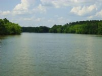 Waterfront - Ocmulgee River Acreage