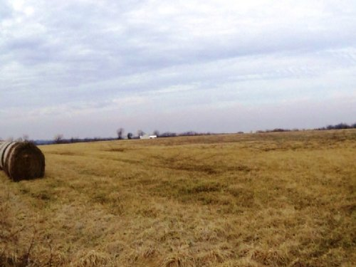 91 Acres : Perry : Ralls County : Missouri