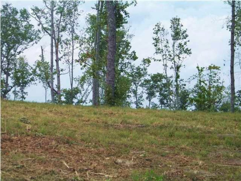 6.48+/- Acres In Jackson Point : Sewanee : Marion County : Tennessee