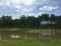 Bluffton Farms