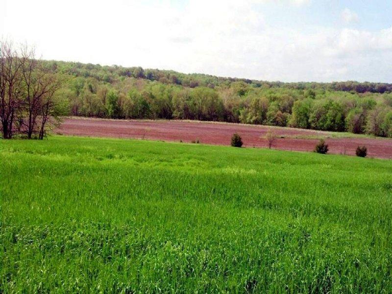 Northeast Kansas Land Auction : Lecompton : Douglas County : Kansas