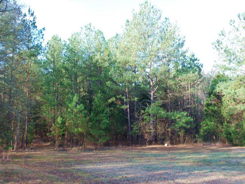 8 Acres : Buffalo : Union County : South Carolina